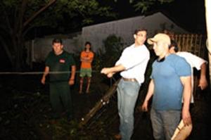 A Prefeitura procurou retirar as árvores derrubadas pela tempestade...