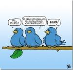 Twitter, o novo meio de se comunicar